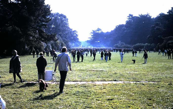 Speedway Meadows, Golden Gate Park, San Francisco ~ 1969 Photo Album by Ralph Davis