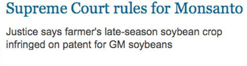 Supreme Court rules for Monsanto: Justice says farmer's late-season soybean crop infringed on patent for GM soybeans