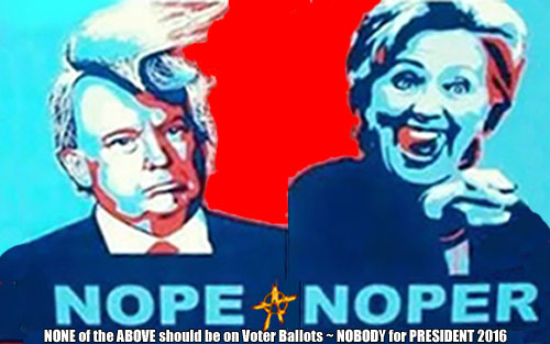 NOPE ~ NOPER ~ NONE of the ABOVE should be on Voter Ballots ~ NOBODY for PRESIDENT