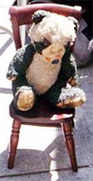 Rocky the Bear Stands Against SIT/LIE  in San Francisco