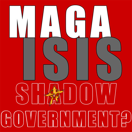 Shadow Government ???
